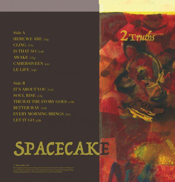 Vinyl back